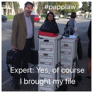 expert file, ccp 2034.415